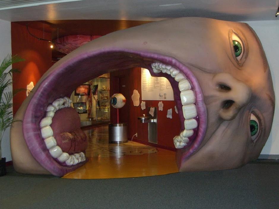 متحف كوربوس فى هولندا شاهد جسدك من الداخل مجلة الرجل