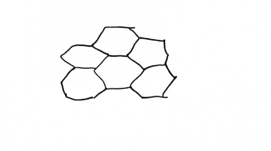 رسمة خلية نحل للتلوين